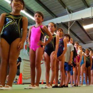Waipahu Gymnastics Classes